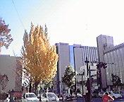 盛岡中央通にて… 11月11<br />  日午前1<br />  1時22分