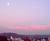 月と夕空… 11月11<br />  日16時31<br />  分