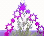 星形のヒカリ… Christmas<br />  飾り午前7<br />  時15分