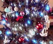 クリスマスツリーの光… 13時41<br />  分