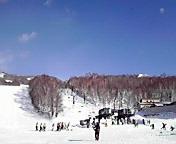 網張スキー場… 1月24<br />  日午前9時2<br />  8分