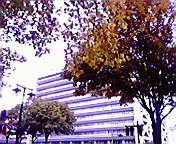 岩手県庁前… 10月16<br />  日午前9時3<br />  8分