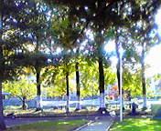 岩手公園… 10月23<br />  日午前1<br />  1時35分