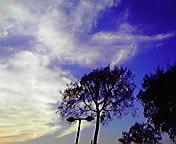 空と木と…矢巾 <br />  10月24日15<br />  時38分