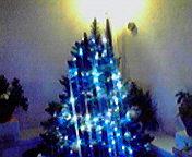 クリスマスツリー… 12月3<br />  日午後12時<br />  21分