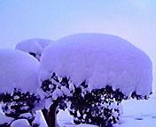 大雪…紫波 1月<br />  1日午前9時<br />  06分