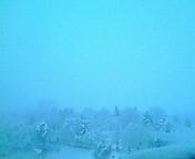 雪…盛岡 1月<br />  13日午前7<br />  時36分