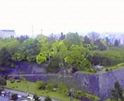 雨の岩手公園… 5月20<br />  日午前9時0<br />  2分