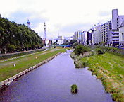 盛岡中津川…毘沙門橋から 6月<br />  4日午前11<br />  時45分