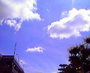 夏空…盛岡菜園 6<br />  月15日13<br />  時48分