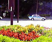 花壇…岩手公園前 7<br />  月26日午前<br />  10時12分