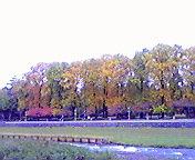 紅葉…盛岡中津川沿い 11<br />  月01日午前<br />  9時36分