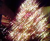 クリスマスツリー…東京銀座11月23<br />  日19時29<br />  分