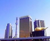 浅草からの東京スカイツリー… 11月28<br />  日午後12時<br />  15分