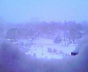 ホワイトクリスマス…盛岡 <br />  12月25日午前8時2<br />  8分