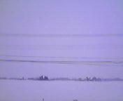 大雪2…紫波 12<br />  月28日午前<br />  11時57分