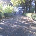 落ち葉の道 …岩手公園 14時50分