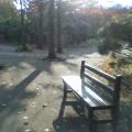 秋のベンチ …岩手公園 10月19日