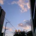 薄紅色の雲 …盛岡菜園 16時06分