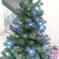 青いライト クリスマスツリー … 菜園 14時