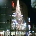 フロムハートビルのクリスマスツリー …盛岡菜園