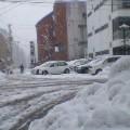 雪Ⅱ … 盛岡菜園 13時28分