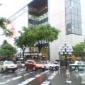 雨・新緑 … 盛岡菜園 15時19分