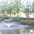 噴水とツツジ…岩手公園前15時40分